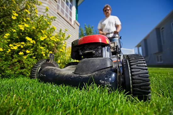 AML-lawn-care